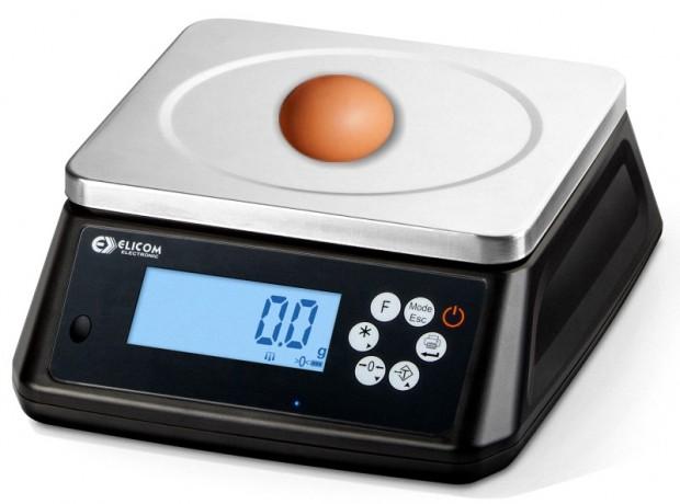 Eichfähige Eier Kontrollwaage für die Eierpackstelle
